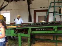 Learning about how sisal is made