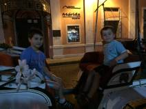 great night for a carriage ride!